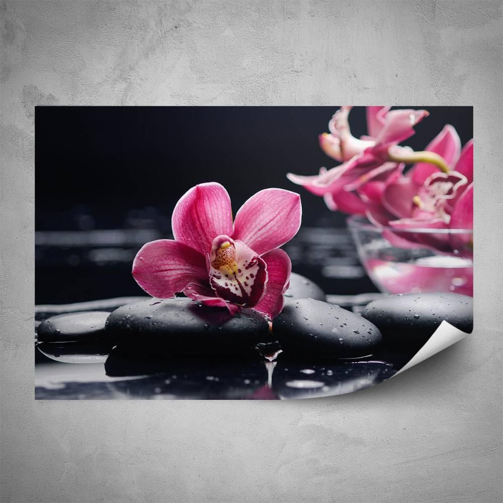 Plakát - Květy orchideje (60x40 cm)